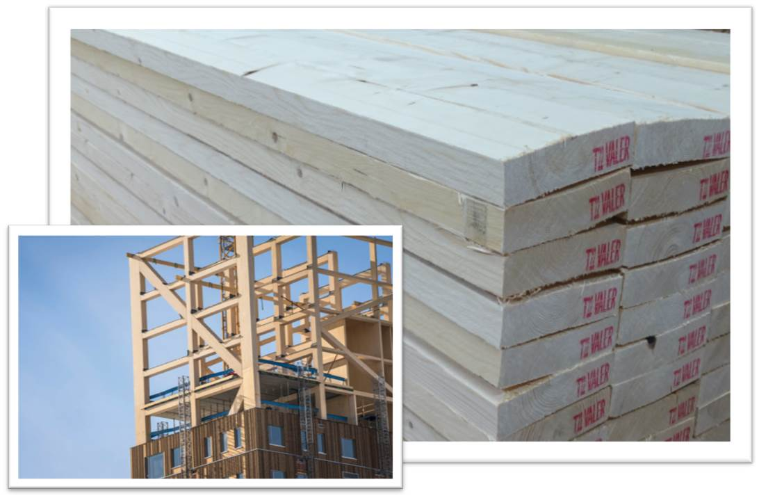 Sawn timber for production of glulam